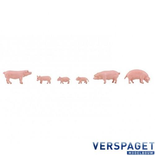 Varkens HO 1:87 -151910
