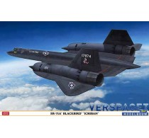 SR-71A Blackbird Ichiban -01943