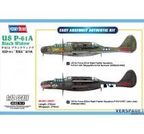 US P-61A Black Widow -872641