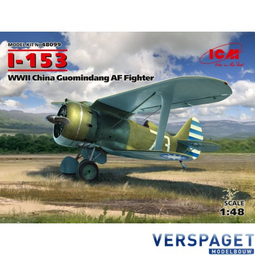 I-153, WWII China Guomindang AF Fighter -48099