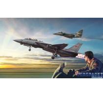 Top Gun F-14A vs A-4F -1422