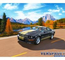 2006 Ford Shelby GT-H & Verf & Lijm & penseeltje -67665
