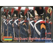 Old Guard Standing at Ease -170
